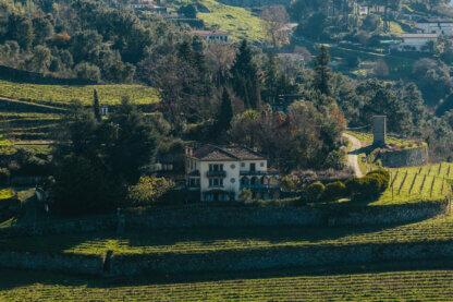 A&D Wines Quinta de Santa Teresa
