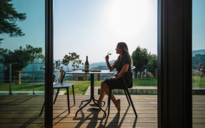 Wine tasting with Douro valley view